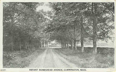 Cummington Homestead Ave