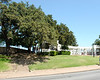 Grassy Knoll from Elm st.