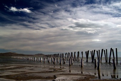 Old railroad and pier pilings at Promontory Point, Utah. This is what is left of the railroad trestle system of the Lucin Cutoff, built in 1905, which went across the Great Salt Lake.