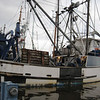 Pacific Conquest,Built 1981 Thompson Trawlers,