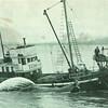 1961_Tom_Al_Whaling_Astoria_Frank_Parker_Bow,Built 1900 Ballard as Ragnhild,Eben Parker,Pic Taken Astoria,