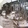 July 1946  Seattle  Martle  65000 Cod Fish  Zarembo II  Drag Fish  A Strand   Minor Lervold