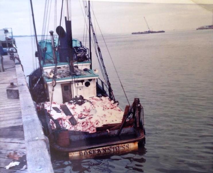 Rose Ann Hess  Pic Taken 1965 Astoria  88000 Aboard  Ugos Oil Dock  Jimmy Parker