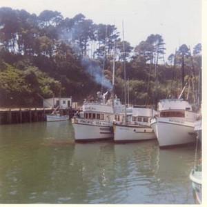 Northern_Light_Pacific_Sea_Fort_Bragg