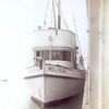Molly_Lou,Built 1930 Seattle,Pearl Dick,Richard Brock,Salvatore DeGaetano,pic taken Astoria