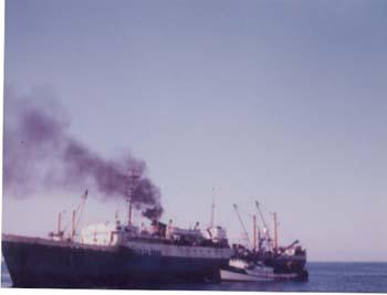 Vega_1985_Bering_Sea