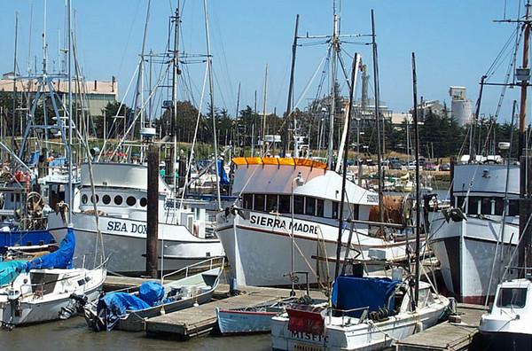 Sierra_Madre_Sea_Doxy_Moss_Landing_Tralee