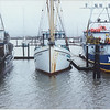 Storm,ELDORADO_EXODUS,Westport,John  Edwards