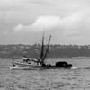 NICK_C_II_1949