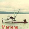Lily_Marlene_Astoria,Darryl Bergerson,Art Anderson,Bryan Salo,
