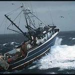 Ocean_Leader_Bering_Sea_jay_Pedersen_1a