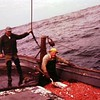 Rudy Lovvold Jalmar Johnson  Shrimping Sunrise 1960  Jalmar 60yrs old  and on Deck