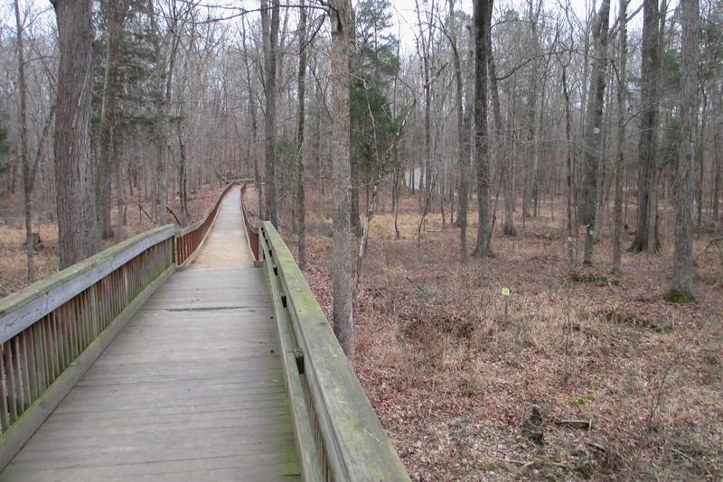 A long wide boardwalk leads across the floodplain of Little Meadow Creek...