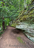 Over crop of the famous ledges along the scenic trails that border the Grand River, in Grand Ledge Michigan.