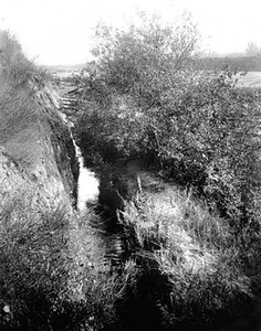 1890, Buena Vista Reservoir Ditch