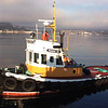 Grace,Built 1968 Pacific Tow Boat Co Of Anacortes,Foss Towboat,Freemont Tugboat Co,On the Bridge Eric Freeman,