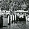 Megler Ferry Landing  Washington  Columbia River