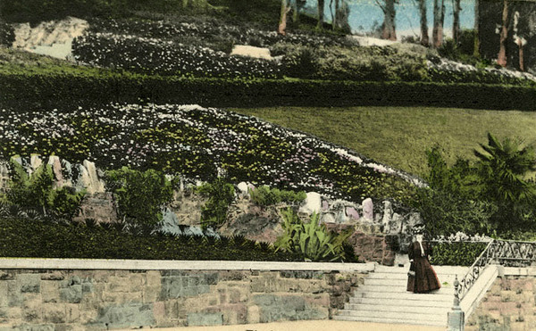 1909, Woman on Stairs Postcard