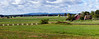 Panoramic shot of the Codori farm and surrounding battlefield