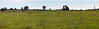 Panoramic of Cemetery Ridge (Union line) taken while approaching from Seminary Ridge