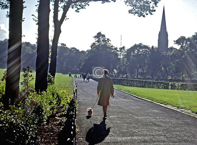 Things To Do in the Queen's Park, no.16 - Walk the dog. [1960s]