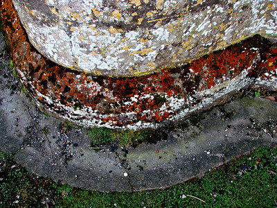 Lichen colonising the stone footings.