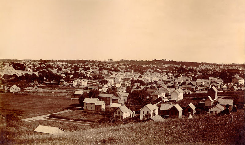 Gloversville birdseye view, July 1891.