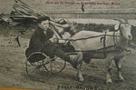 Granville Center Goat Cart R P