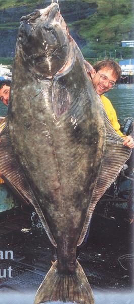 350lb_Alaska