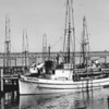Borghild,Restitution,Built 1919 Seattle,Arnold Grytting,Alfred Aakervik,Washington Fish and Oyster Co,Pic Taken San Francisco,
