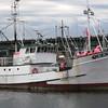 Quest,Built 1979 Tacoma,Dean Adams,Pete Knutsen,Pic Taken 2013 Seattle,