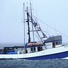 Ginny C  formally Named  Yarsh  Matylda  ST 359 U S A  Built 1943 Anacortes  Whiz Fish  Halferty Canneries  McAlister Equipment  James Edson   Mike Carr  Jim Swift Kelly Warren  John Bruce