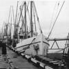 Aleutian,Built 1928 Seattle,Builder Ole Moberg,Owner 1955 Nels Pedersen,Pic Taken 1955 Eureka,Albacore Fishing,