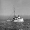 Anne_1946,Builder Sagstad,Lyle Hilde,Steven Mock,