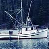 Sandy Lee Built 1956 Everett  By   Nels Swede  Bodin  Joe Daniels  Joe and Tami Daniels   Alaska  Longlining  Crabbing  Gillnetting