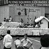 HARVEY, IL - JULY 4TH PARADE<br /> Probably the 1970's when the citizen's band (CB) craze hit the USA.