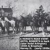 HORSE'S REAR VIEW - HARVEY, IL - EARLY 1900's<br /> Note cobblestone streets--a number of Harvey streets in 2013 are still that way, just topped with asphalt.