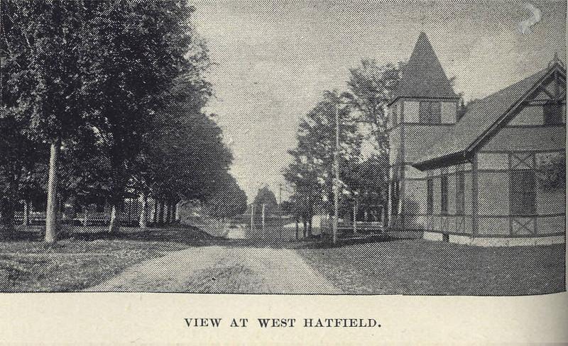West Hatfield View