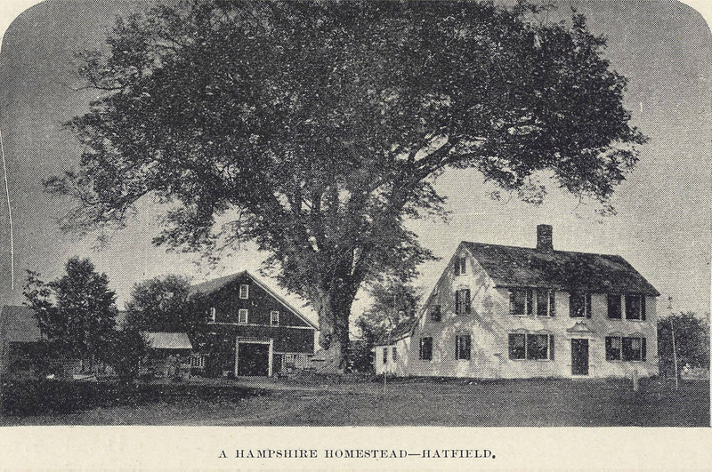 Hatfield A Homestead