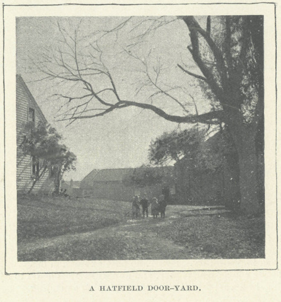 Hatfield Door-yard