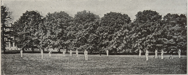 Earliest photo in our collection of Cricket being played on this field. Predates naming as Cope Field.