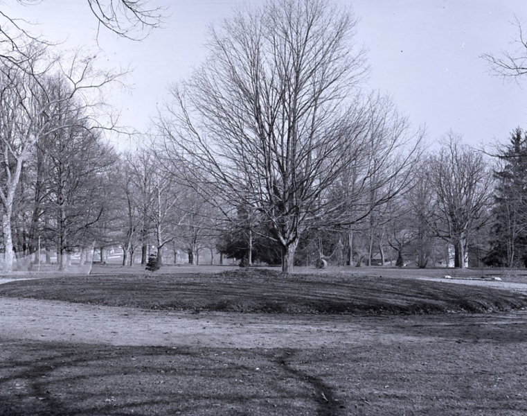 Cricket Practice Pitch, also from the Library Company of Philadelphia collection.