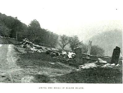 North Heath Hills