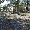 Oak Grove Cemetery Debris in Brunswick, Georgia after Hurricane Mathew 10-10-16