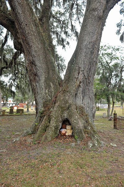 Oak Grove Cemetery Society cleaning Capt. Christensen Plot 01-12-19