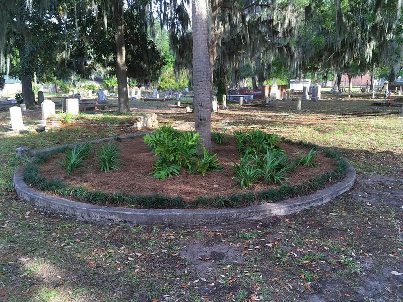 OGCS plants Oak Grove Cemetery Circle 04-12-17