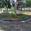 OGCS plants Oak Grove Cemetery Circle 04-12-17