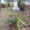 Oak Grove Cemetery Cleanup Day by OGCS 11-12-16