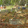 Oak Grove Cemetery Society - Brunswick, Georgia - Documenting damages to gravesites, fencing, dead trees, dirty monuments, and foilage debris