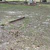 Oak Grove Cemetery Society - Brunswick, Georgia - Specific site damage needing repairs - 11-21-15